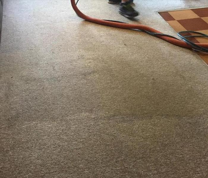 Residential and Commercial Carpet Cleaning in Athens Georgia Before