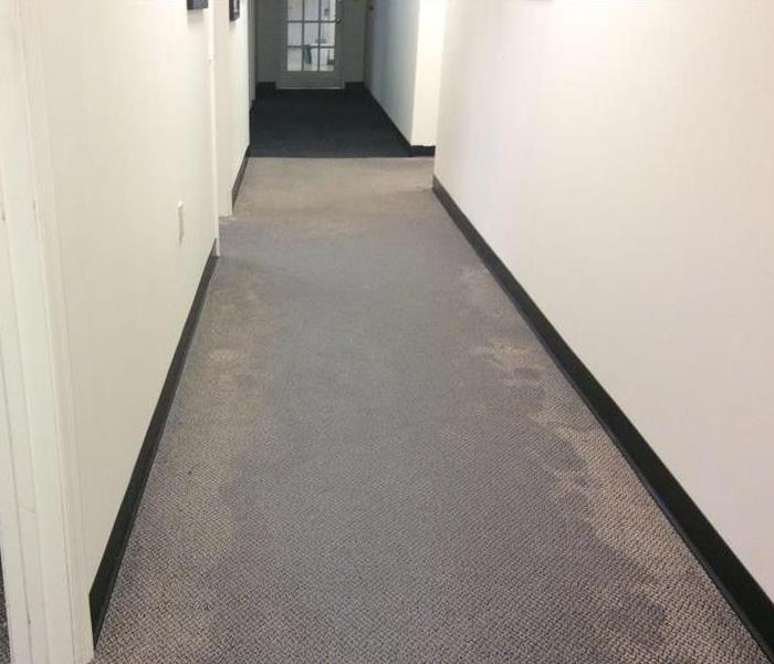 hallway carpet is damp