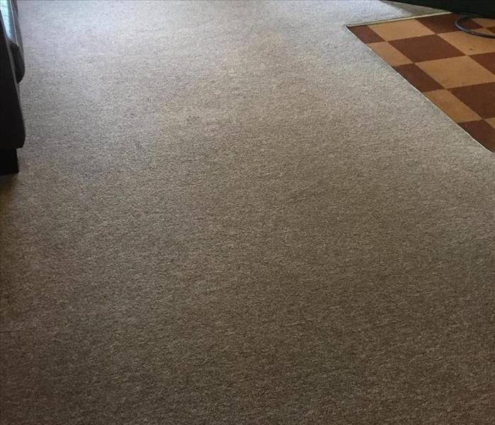 Residential and Commercial Carpet Cleaning in Athens Georgia After