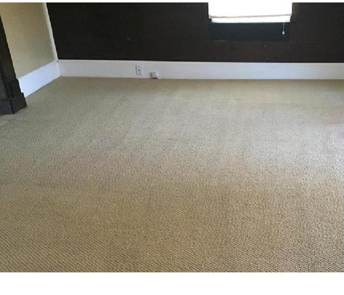 SERVPRO of Athens Carpet Cleaning After